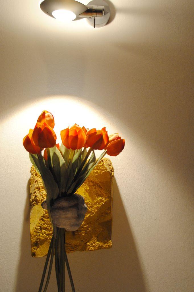 Tulpen + Licht
